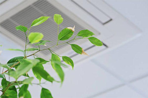 vvs fredericia - ventilation sundt indeklima